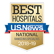 US News Best Hospitals badge 2018-19 small version